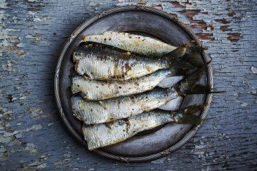 sardines-1489630_1920